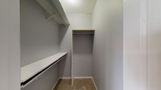 Photo 29: 120 CHRISTINA Way: Sherwood Park House for sale : MLS®# E4255089