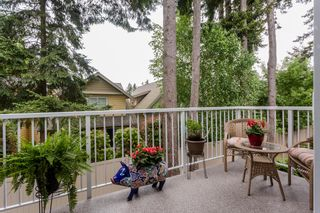 """Photo 41: 70 2500 152 Street in Surrey: King George Corridor Townhouse for sale in """"Peninsula Village"""" (South Surrey White Rock)  : MLS®# R2270791"""