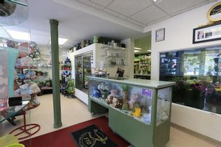 Photo 5: 569 St Mary's Road in Winnipeg: Industrial / Commercial / Investment for sale (2D)  : MLS®# 202101597
