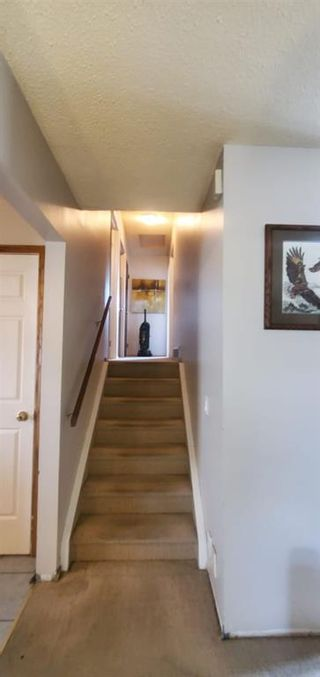 Photo 8: 84 Whitnel Place NE in Calgary: Whitehorn Detached for sale : MLS®# A1116958