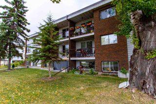 Photo 2: 204 10949 109 Street in Edmonton: Zone 08 Condo for sale : MLS®# E4232521