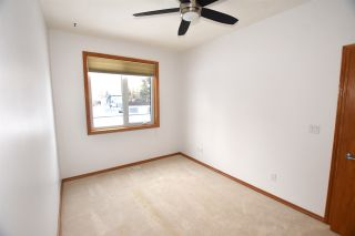 Photo 15: 332 ST. JOHN Street: Cardiff House for sale : MLS®# E4225500
