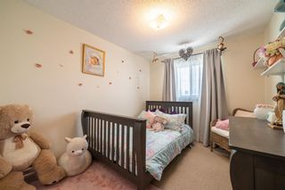 Photo 21: 49 Templeson Crescent NE in Calgary: Temple Detached for sale : MLS®# A1089563