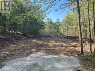 Photo 19: 1372 LAKE LORRAINE Road in Tory Hill: Vacant Land for sale : MLS®# 40052884