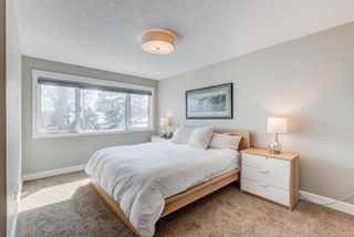 Photo 26: 507 28 Avenue NW in Calgary: Mount Pleasant Semi Detached for sale : MLS®# A1097016