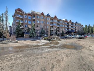 Photo 26: 115 10 Discovery Ridge Close SW in Calgary: Discovery Ridge Apartment for sale : MLS®# A1095316