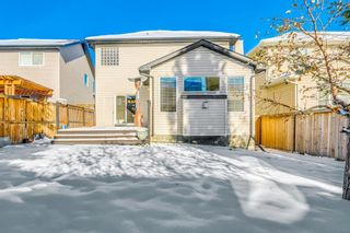 Photo 22: 594 Chaparral Drive SE in Calgary: Chaparral Detached for sale : MLS®# A1065964