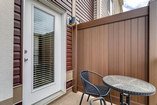 Photo 21: 32 804 WELSH Drive in Edmonton: Zone 53 Townhouse for sale : MLS®# E4246512
