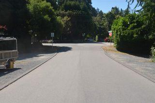 Photo 10: 2801 GORDON Avenue in Surrey: Crescent Bch Ocean Pk. House for sale (South Surrey White Rock)  : MLS®# R2603059