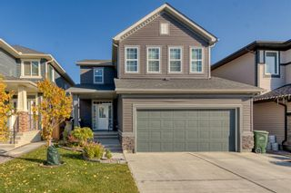 Main Photo: 42 Evansfield Terrace NW in Calgary: Evanston Detached for sale : MLS®# A1156337