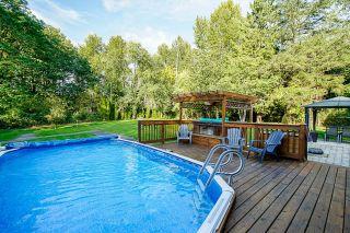 Photo 33: 24445 104 Avenue in Maple Ridge: Albion House for sale : MLS®# R2621324