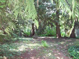 Photo 2: 66563 SUMMER ROAD in Hope: Hope Kawkawa Lake Land for sale : MLS®# R2568024