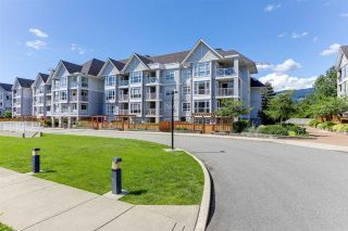 """Photo 3: 213 3142 ST JOHNS Street in Port Moody: Port Moody Centre Condo for sale in """"SONRISA"""" : MLS®# R2590870"""