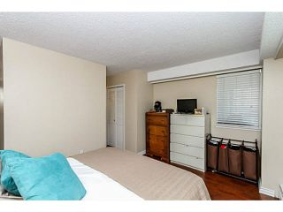 """Photo 13: 304 47 AGNES Street in New Westminster: Downtown NW Condo for sale in """"FRASER HOUSE"""" : MLS®# V1115941"""