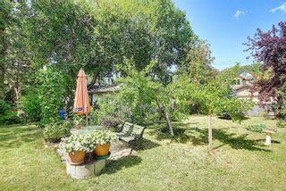 Photo 35: 10504 73 Avenue S in Edmonton: Zone 15 House for sale : MLS®# E4260891