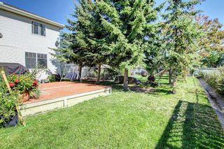 Photo 39: 690 Coventry Drive NE in Calgary: Coventry Hills Detached for sale : MLS®# A1144228