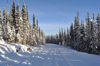 """Photo 1: 210 ALPINE Way in Smithers: Smithers - Rural Land for sale in """"Hudson Bay Mountain Estates"""" (Smithers And Area (Zone 54))  : MLS®# R2453895"""