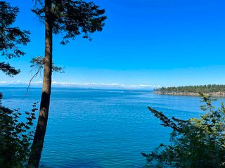 Photo 3: 455 EAST POINT Road: Saturna Island Land for sale (Islands-Van. & Gulf)  : MLS®# R2602699