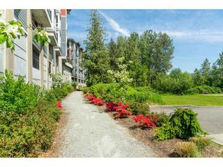 """Photo 24: 205 2242 WHATCOM Road in Abbotsford: Abbotsford East Condo for sale in """"WATERLEAF"""" : MLS®# R2455089"""