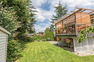 Photo 20: 3001 265B Street in Langley: Aldergrove Langley House for sale : MLS®# R2092848