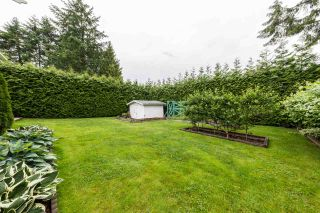 Photo 18: 22875 STOREY Avenue in Maple Ridge: East Central House for sale : MLS®# R2179109