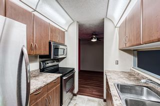 Photo 4: 114 11 Dover Point SE in Calgary: Dover Apartment for sale : MLS®# A1125915