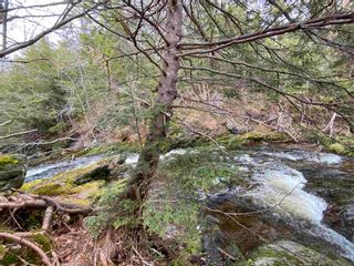 Photo 13: Sherbrooke Road in Greenvale: 108-Rural Pictou County Vacant Land for sale (Northern Region)  : MLS®# 202111683