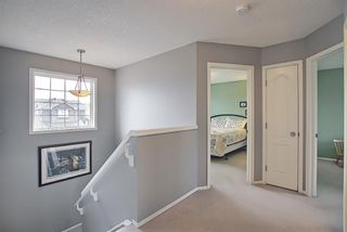 Photo 27: 73 Canals Circle SW: Airdrie Detached for sale : MLS®# A1104916