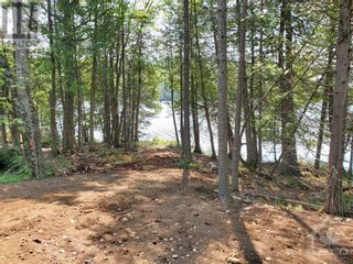 Photo 14: 2600 CLYDE LAKE ROAD in Lanark: Vacant Land for sale : MLS®# 1253879