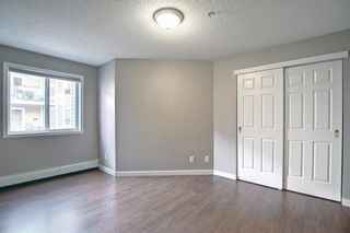 Photo 16: 206 290 Shawville Way SE in Calgary: Shawnessy Apartment for sale : MLS®# A1146672