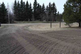 Photo 31: 4502 22 Street: Rural Wetaskiwin County House for sale : MLS®# E4241522