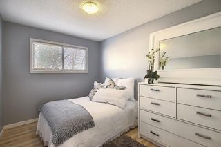Photo 18: 412 33 Avenue NE in Calgary: Winston Heights/Mountview Semi Detached for sale : MLS®# A1068062