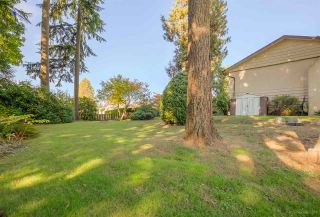"""Photo 20: 3311 DALEBRIGHT Drive in Burnaby: Government Road House for sale in """"GOVERNMENT ROAD"""" (Burnaby North)  : MLS®# R2214815"""