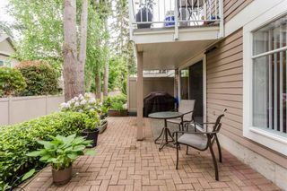 """Photo 42: 70 2500 152 Street in Surrey: King George Corridor Townhouse for sale in """"Peninsula Village"""" (South Surrey White Rock)  : MLS®# R2270791"""