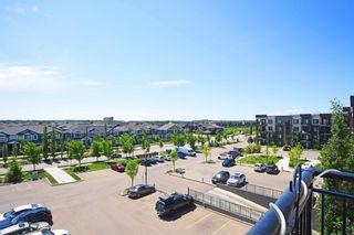 Photo 36: 404 1004 ROSENTHAL Boulevard in Edmonton: Zone 58 Condo for sale : MLS®# E4250933
