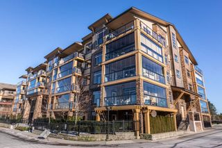 """Photo 19: 554 8258 207A Street in Langley: Willoughby Heights Condo for sale in """"Yorkson Creek"""" : MLS®# R2131464"""