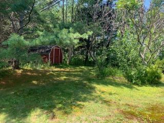 Photo 3: 145 Point Forty Four Road in Little Harbour: 108-Rural Pictou County Residential for sale (Northern Region)  : MLS®# 202120241