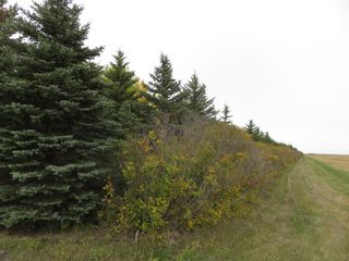 Photo 6: 0 Centreline Road: RM Springfield Vacant Land for sale (R04)  : MLS®# 202103923