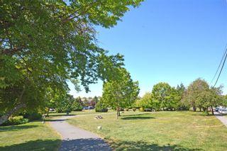 Photo 4: 311 1000 Inverness Rd in : SE Quadra Condo for sale (Saanich East)  : MLS®# 877422