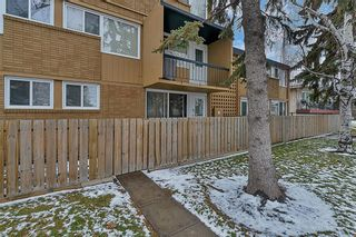Photo 3: 104 607 69 Avenue SW in Calgary: Kingsland Apartment for sale : MLS®# A1088841