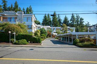 Photo 48: 308 1686 Balmoral Ave in : CV Comox (Town of) Condo for sale (Comox Valley)  : MLS®# 861312