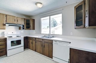Photo 16: 132 Mardale Crescent NE in Calgary: Marlborough Detached for sale : MLS®# A1146772