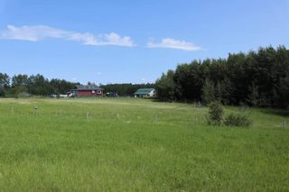Photo 7: 15070 HWY 771: Rural Wetaskiwin County House for sale : MLS®# E4254089