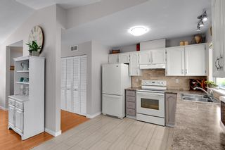 Photo 5: 20345 115 Avenue in Maple Ridge: Southwest Maple Ridge House for sale : MLS®# R2590240
