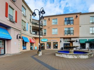 Photo 3: 314 1642 McKenzie Ave in : SE Lambrick Park Condo for sale (Saanich East)  : MLS®# 888247