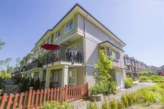 """Photo 14: 61 10151 240 Street in Maple Ridge: Albion Townhouse for sale in """"ALBION STATION"""" : MLS®# R2184527"""