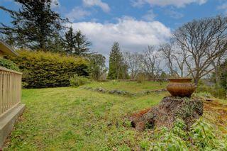 Photo 24: 4146 Cedar Hill Rd in : SE Mt Doug House for sale (Saanich East)  : MLS®# 871095