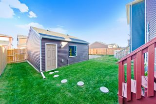Photo 26: 24 Red Embers Row NE in Calgary: Redstone Detached for sale : MLS®# A1148008