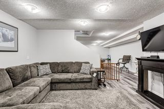 Photo 29: 5 Templeton Bay NE in Calgary: Temple Semi Detached for sale : MLS®# A1113362
