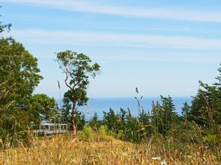 Photo 23: 5046 Rocky Point Rd in Metchosin: Me Rocky Point House for sale : MLS®# 842650